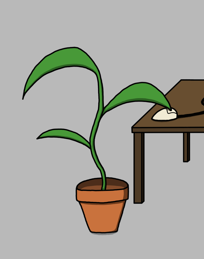 Plant and Play